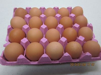 生みたての卵