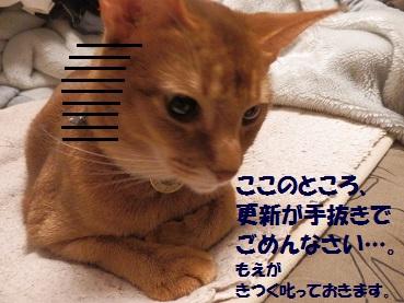 PC143175.jpg