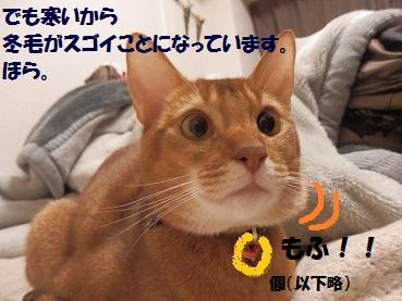 PC203267.jpg