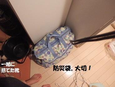 PC263366.jpg