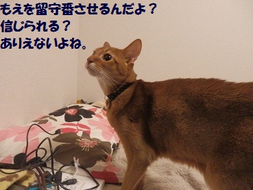 PC283396.jpg