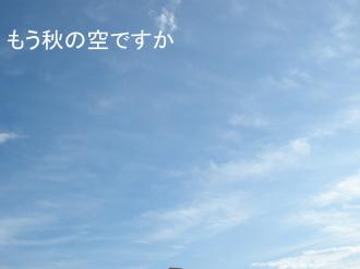 P8130417.jpg