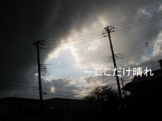 PA310333.jpg