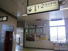 IMG_4146-naruko.jpg