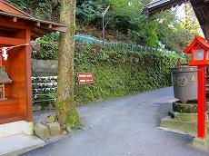 IMG_5071-ikaho.jpg