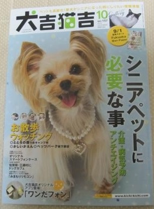 犬吉猫吉2