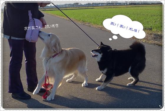 2014,11,19お散歩5