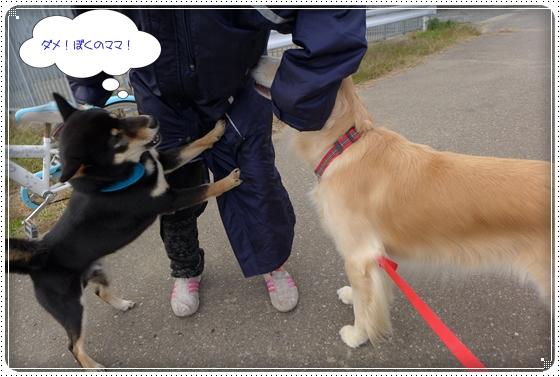 2014,11,24お散歩9
