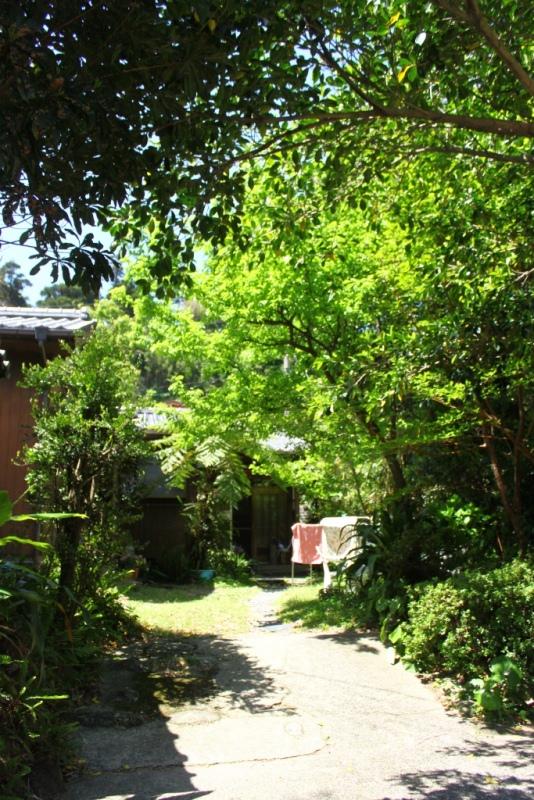 yakushima 610