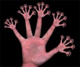 hand_fractal_20120917210112.jpg