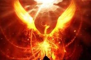 phoenix001_20120812074152.jpg