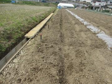 農園U字溝のフタ2