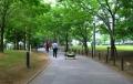 キャンパス公園