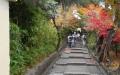 高台寺の参道