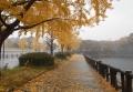 大坂城のお濠端