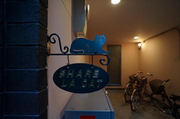 cat-house-1.jpg