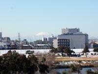 多摩川から富士山