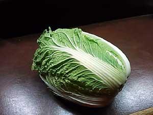 AKDファーム白菜