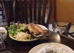 food1328.jpg