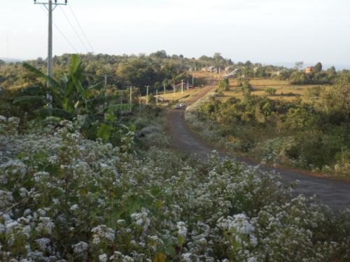 モンドルキリの高原
