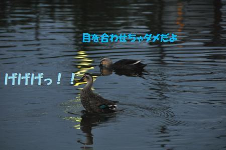 20121020-2.jpg