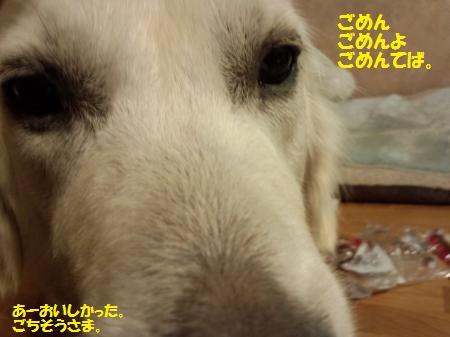 20121119-3.jpg