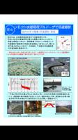 庄内川河川事務所web20130119
