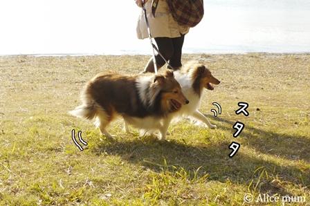 ② mini