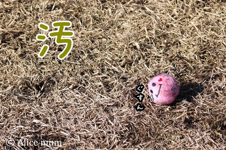 25-2 汚ボール mini