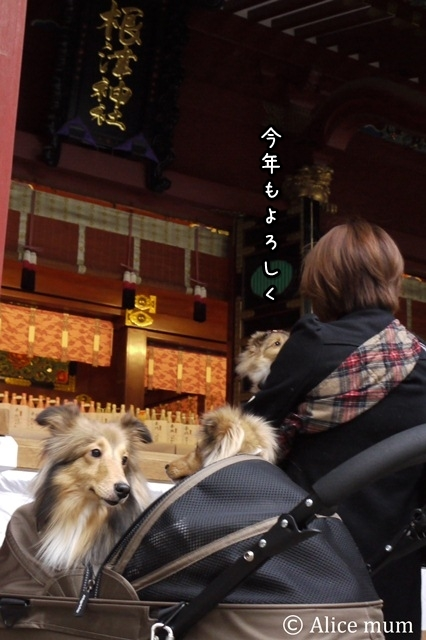 ⑭お詣り mini