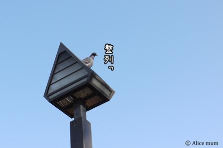 ⑧現場監督 mini