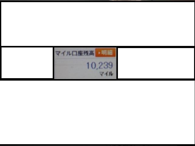 P1031275.jpg