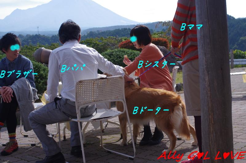 IMGP0523.jpg