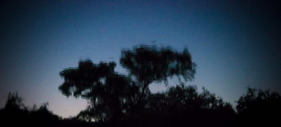 20131115-DSC_0720.jpg