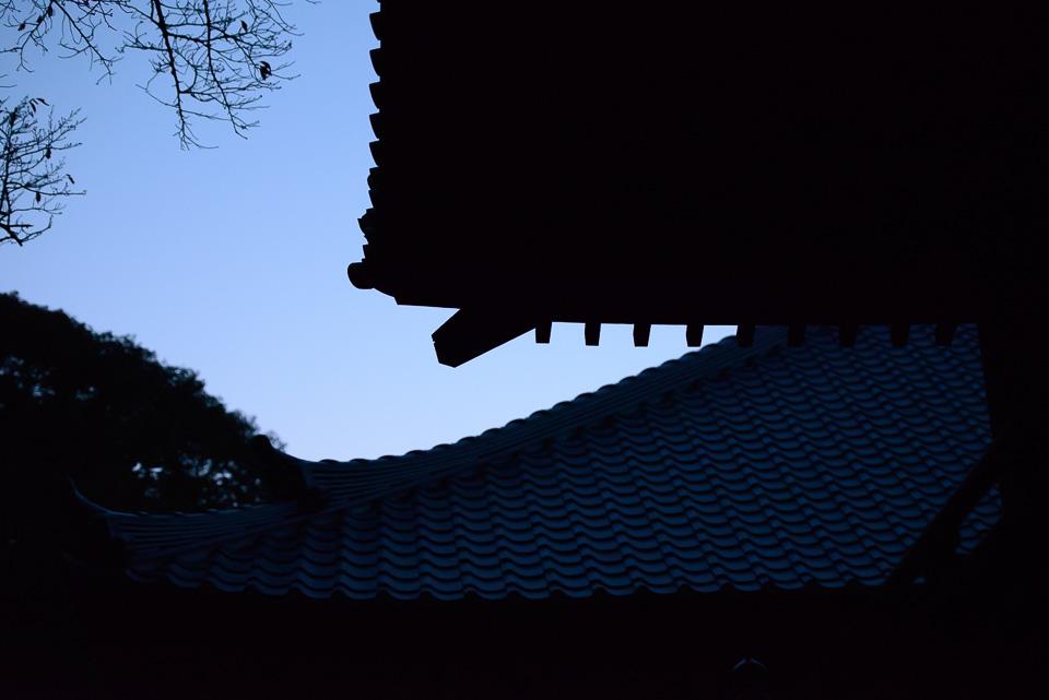 20131117-DSC_0769.jpg