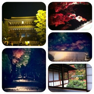 20121100kyoto.jpg