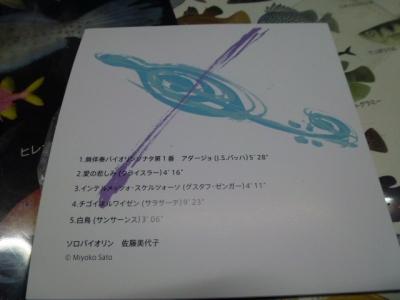 P1020641.jpg