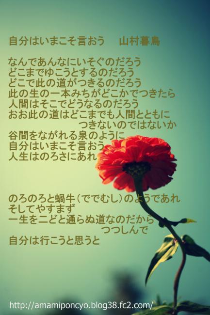 IMG_4695_6967-001.jpg