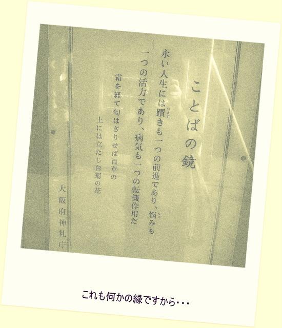 P9090028_0436.jpg