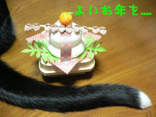 猫にSweets-ジージョのしっぽ