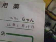 猫にSweets-SN3M0031.jpg