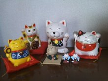 猫にSweets-SN3M0037.jpg