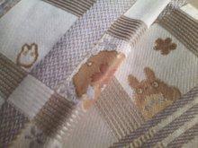 猫にSweets-SN3M0095.jpg