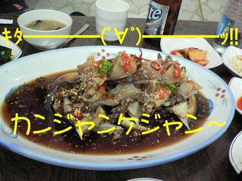 猫にSweets-カンジャンケジャン