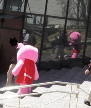 ピンクのBooBo70