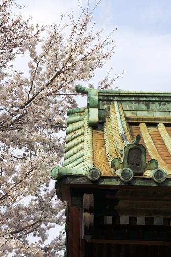 201303上野・寛永寺の門と桜2