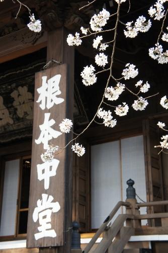 201303上野・寛永寺根本中堂