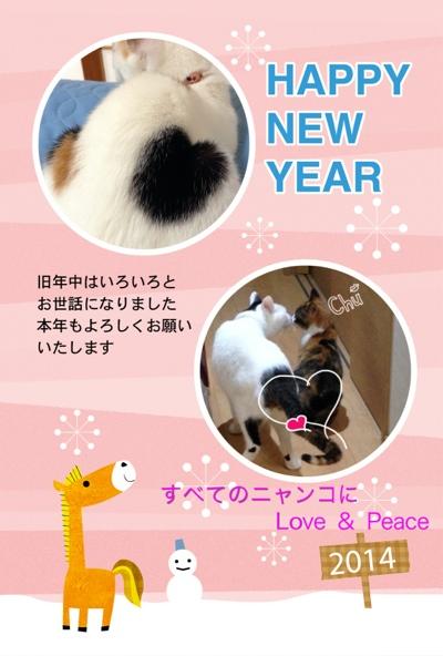 fc2blog_20140102202158b68.jpg
