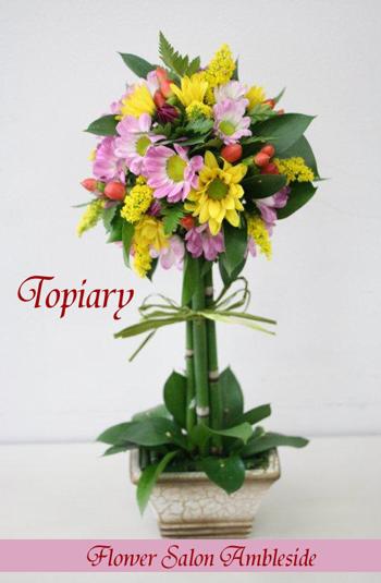 IMG_1036-トピアリーIFA