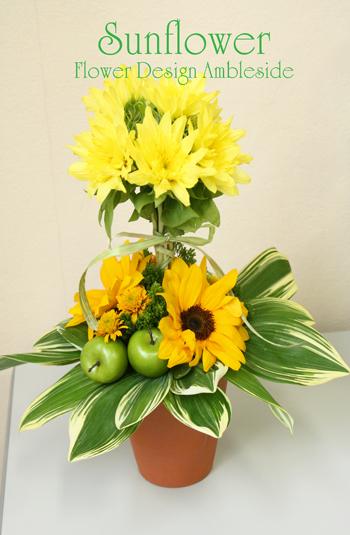 IMG_8915-sunflower.jpg